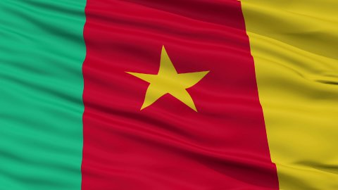Close Up Waving National Flag of Cameroon - stock footage