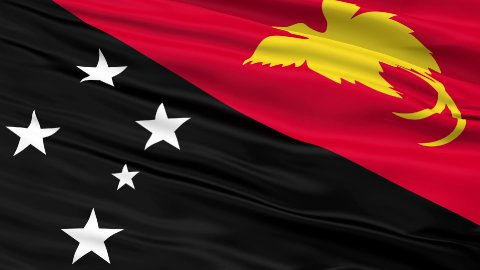 Close Up Waving National Flag of Papua New Guinea - stock footage