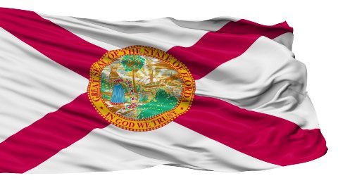 Isolated Waving National Flag of Florida - stock footage