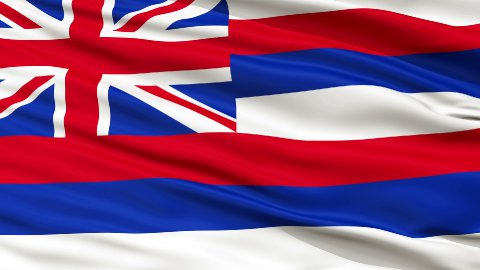 Close Up Waving National Flag of Hawaii - stock footage