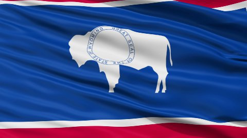 Close Up Waving National Flag of Wyoming - stock footage