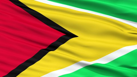 Close Up Waving National Flag of Guyana - stock footage