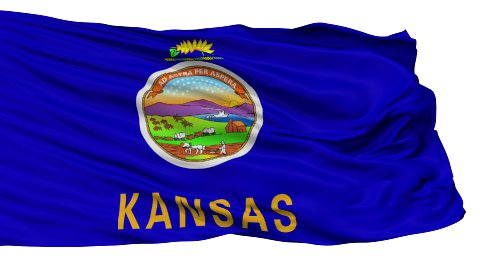 Isolated Waving National Flag of Kansas - stock footage
