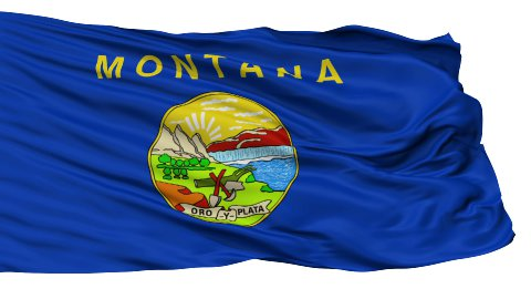 Isolated Waving National Flag of Montana - stock footage