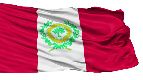 Isolated Waving National Flag of Raleigh City - stock footage