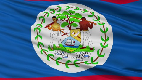 Close Up Waving National Flag of Belize - stock footage