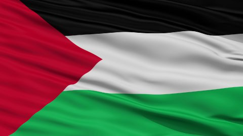 Close Up Waving National Flag of Palestine - stock footage