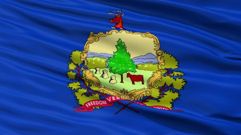 Close Up Waving National Flag of Vermont - stock footage