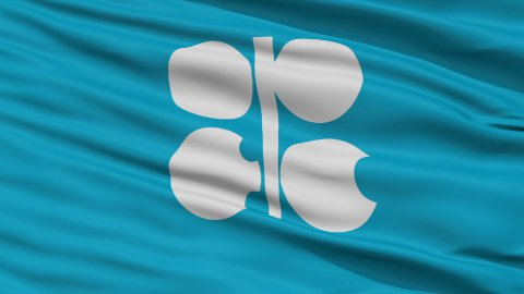 Close Up Waving Flag of OPEC - stock footage