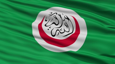 Close Up Waving National Flag of OIC - stock footage