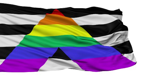 Straight Ally Close Up Waving Flag - stock footage