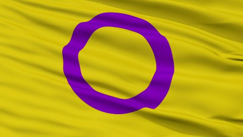 Intersex Close Up Waving Flag - stock footage