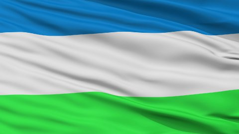 Republic of Molossia Micronation Close Up Waving Flag - stock footage