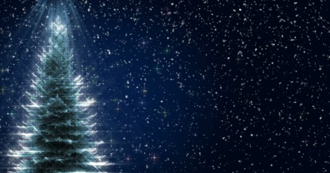 Shiny Christmas Tree - stock footage