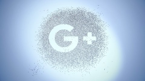 Editorial Animation: People of Google Plus - stock footage