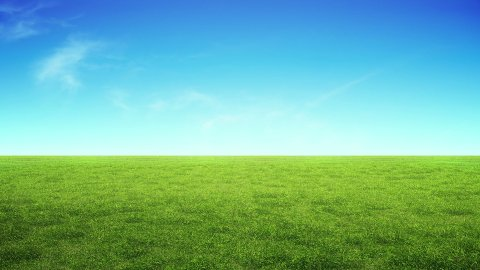 Perfect Green Grass and Sunny Sky, LOOP - stock footage