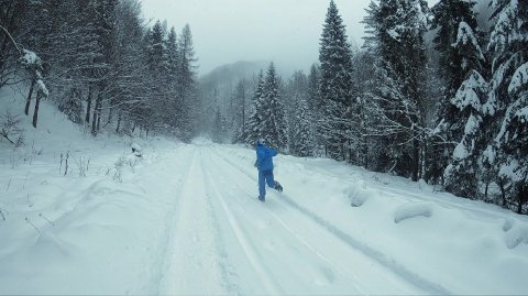 Boy is Running Towards the Snowy Mountains and Then He Jumps into the Snow. - stock footage