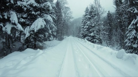 Snow-covered mountain road in a forest. Slow motion. - stock footage