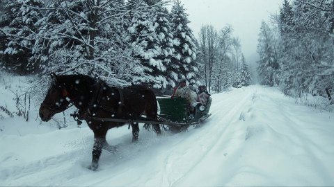 Editorial Video of Sleigh Ride On Snow-Covered Mountain Road In a Forest. - stock footage