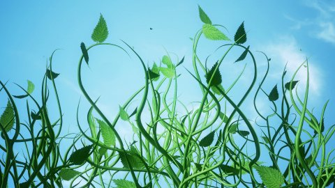 Floral Background Animation. Growing Plants. - stock footage