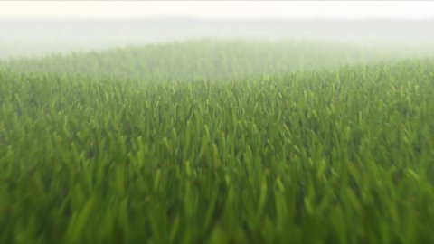 Spring grass camera fly over LOOPED - stock footage