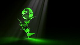 Green Earth Concept - motion graphic