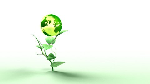 Green Earth Concept on white - stock footage