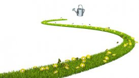 Watering can and growing grass with flowers and butterflies