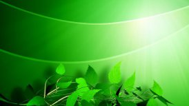 Green background - motion graphic