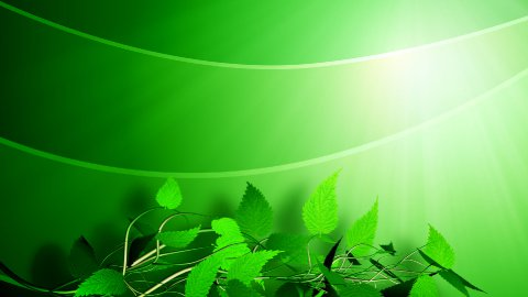 Green background - stock footage
