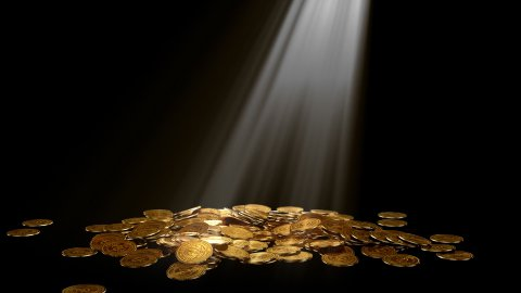 golden coins on black with growing plant and volume light - stock footage