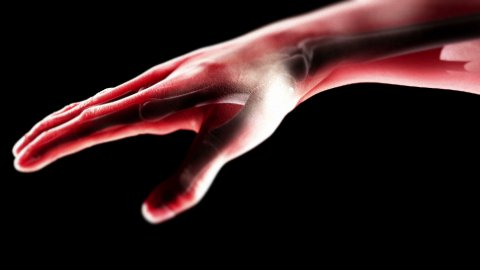 hand with bones LOOP - stock footage