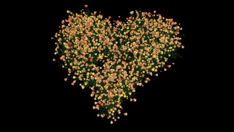 Heart of roses with Alpha - stock footage