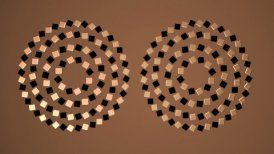 Perfectly Round Circles LOOP - motion graphic
